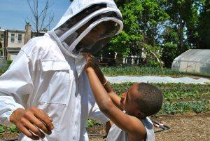 Kalib zips Ryan into the bee suit