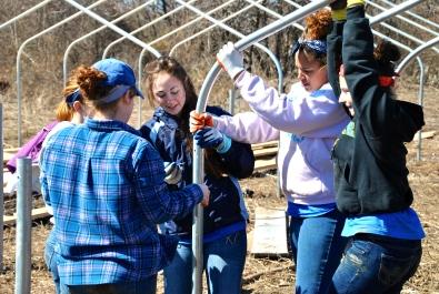 University of Delaware Alternative Spring Breaks Volunteers - Building High Tunnels